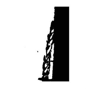 schwarzundweiss-11