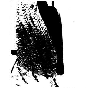 schwarzundweiss-2