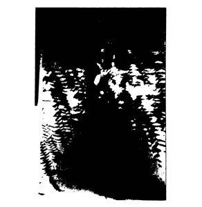 schwarzundweiss-4