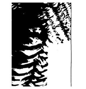 schwarzundweiss-5