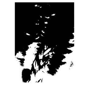 schwarzundweiss-7