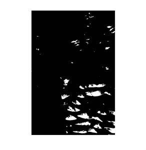 schwarzundweiss-9
